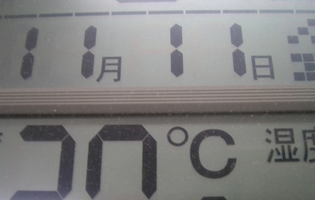 111111c.JPG